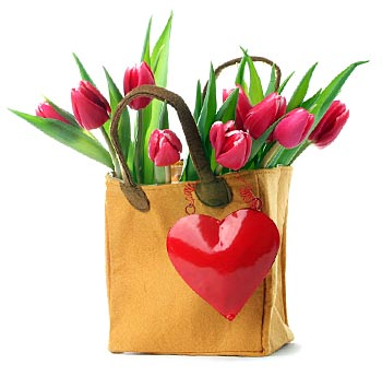 Bag of Tulips