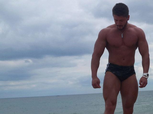 Muscle Denis