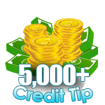 5,000 - 7,999 Credit Tip