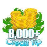 8,000 - 9,999 Credit Tip
